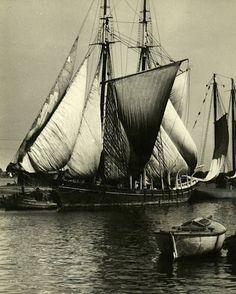 ⚓♡salt air⊰⛵ . Tall ship