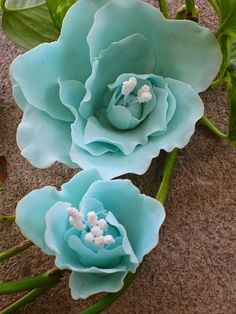 Tiffany Blue Flower
