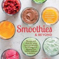 Smoothies and Beyond: Recipes and ideas for using your pro-blender by Tori Ritchie, EPUB, 1616288035, cookingebooks.info
