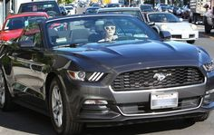Emma Roberts Seen Driving Her 2015 Ford Mustang Convertible