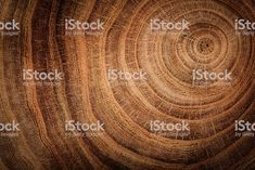 wooden background - Royalty-free Wood - Material Stock Photo Wood Illustrations, Tree Felling, Wooden Background, Oak Tree, Abstract Photos, Royalty, Stock Photos, Free, Image