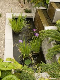 contemporary garden design ideas terrace plants waterfall feature