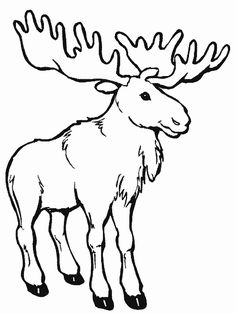 Moose coloring page – Free Printable Coloring Pages Make your world more colorful with free printable coloring pages from italks. Our free coloring pages for adults and kids. Animal Coloring Pages, Coloring Book Pages, Kids Activity Center, Animal Templates, Christmas Moose, Art Pages, Free Printable Coloring Pages, Coloring Pages For Kids, Free Coloring