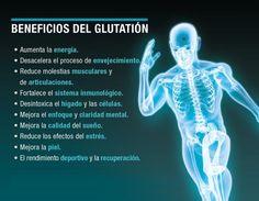 Glutation el antioxidante maestro