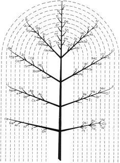 Muller's Tree System