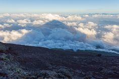 Mt Fuji casting a shadow on the clouds below [OC] [4953x3302]