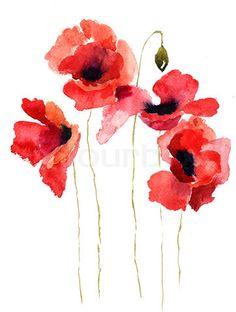 Stock image of 'Stylized Poppy flowers illustration'