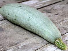 #BigBlue Guatemalan #Heirloom #Winter Squash Seeds Very Rare Non GMO