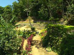 Parque Sitiê, no Vidigal (Grep) (Foto: Reprodução Globo Repórter)