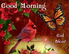 Good Morning Greetings, Good Morning Good Night, Morning Pictures, Morning Images, Bird Pictures, Cute Pictures, Missing Someone In Heaven, Good Morning Friends Quotes, Morning Quotes