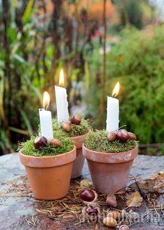 Mitä olisivat pimenevät syysillat ilman kyntitlöitä? Tuo valoa myös kotipuutarhaan kauniilla kynttiläasetelmalla. Täytä ruukku kuivakukkasiemenillä tai hiekalla. Työnnä kynttilä tukevasti ruukkuun ja peitä pinta sammalella. Koristele mieluisimmilla luonnon raaka-aineilla. Candles, Candy, Candle Sticks, Candle