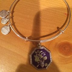 Alex and Ani - The Pursuit of Persephone Collection, Seduced by Innocence - Violet (February)