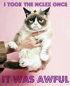 Fyi world... | Fun nursing stuff:) | Pinterest | World