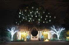 The White Garden looks spectacular when lit with white lights!