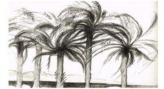 Palmeres al vent Cactus Plants, Art, Art Background, Cacti, Kunst, Cactus, Performing Arts, Art Education Resources, Artworks