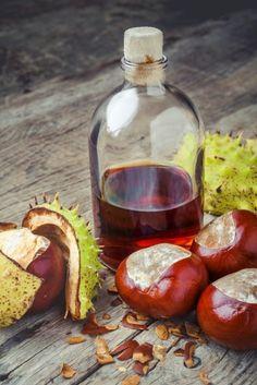 Kaštany, plody stromu jírovec maďal, léčí revmatismus, dnu, kašel, bolesti zad i hlavy. Kaštany pomáhají i v kapse a v posteli. Recepty na tinkturu a mast Bolet, Naturopathy, Homeopathy, Herbalism, Alcoholic Drinks, Coconut, Herbs, Homemade, Fruit