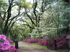 St Francisville Louisiana in spring