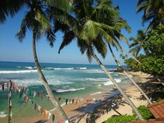 Wijaya Beach, Unawatuna - Laidback beach bar and restaurant a short tuk-tuk ride away from Galle Fort. Wood fired pizzas, safe swimming lagoon and a happening evening vibe.