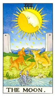 The Moon This is an opportunity to draw messages from your inner self.           General Meaning The Moon card refers to a deep state of …