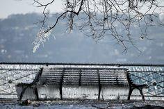 Simplemente Algunas fotos: Invierno