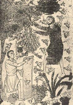 Woodcut Medieval Beekeeping