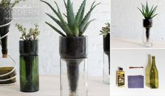 DIY Desktop Planters - DIY Gift World