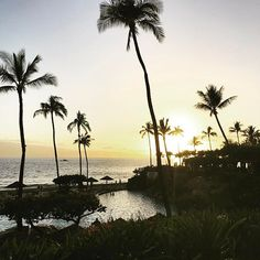 Last night in paradise. I can't recommend this hotel enough for your trip to #maui. My top reasons to stay here are... 1. The pool 2. The proximity to the beach 3. The staff is incredible 4. The sushi at Japengo is the best 5. The location to all the attractions. We had a blast and can't wait to come back to Maui again soon. #100lcgetaways #happilyhyattmauid #mauisunset