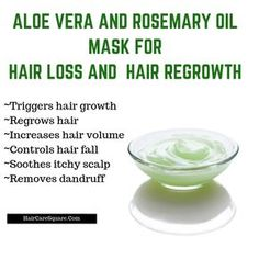 How To Use Rosemary Essential Oil For Hair Growth & Hair Loss? Why It Works? Hey Guys, Have you used rosemary essential oil for your hair? I am sure you must have heard that it helps with dandruff, hair growth, hair loss, regrowth Natural Hair Loss Treatment, Natural Hair Care, Hair Treatments, Hair Growth Treatment, Rosemary Oil For Hair, Rosemary For Hair Growth, Increase Hair Volume, Increase Hair Growth, Oil For Hair Loss