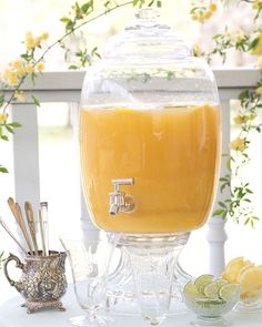 This delicious citrus punch, served with lemons and limes for extra zing, is perfect for spring entertaining outdoors.