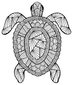 free printable summer coloring pages for kids intricate turtle