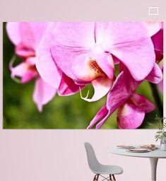 Een orchidee gefotografeerd met op de achtergrond een groene tuin. Close Up, Prints, Flowers, Art, Art Background, Florals, Kunst, Flower, Printmaking