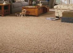 They Are More Arslanian Carpet Indoor Health Cleaning