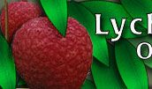 Lychee ( my favorite fruit) I ate so many as a kid I used to break out in a rash..... My mom calls me lychee!