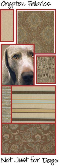 """Crypton """"dog friendly"""" fabrics available at JoAnn Fabrics!"""