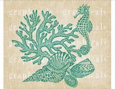Seahorse Coral Shells instant clip art Aqua Digital by graphicals
