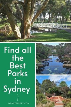 Trying to find a great park in Sydney?Our detailed guide of parks across the city will help you find one that is just perfect for your day out. We list everything you need to know to plan a visit from transport info to if you can take your dog along or whether there are BBQs on site.  #Sydney #Australia Sydney Australia, Australia Travel, Federal Parks, Transport Info, Bicentennial Park, Parks In Sydney, Stuff To Do, Things To Do, New Zealand Travel Guide