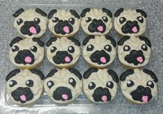 Bailey Cupcakes, Pug Cupcakes, Puppy Party, Dog Birthday, Buttercream Frosting, Cake Ideas, Pugs, Sweet Tooth, Sweets