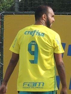 fique por dentro : Alecsandro começa 2017 com a camisa 9 do Palmeiras...