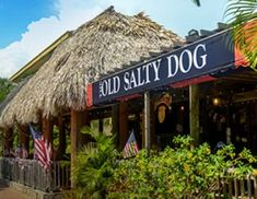 The Old Salty Dog Sarasota& Old Florida Favorite
