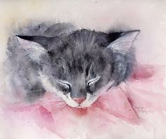 'Dream On' by artbyrachel Watercolor Cat, Watercolor Animals, Watercolor Paintings, Watercolors, Pastel, Grey Cats, Spring Crafts, Cat Art, Illustrations Posters