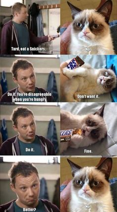 Eat a Snickers, Tard…who knew that grumpy cats name is actually tardar sauce?