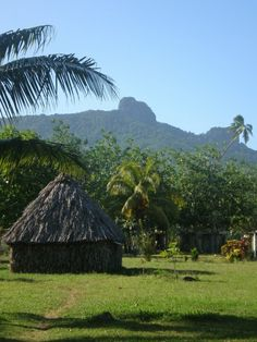 Fiji bure! And no, Fijians don't live in those anymore and wear grass skirts and coconuts.lol