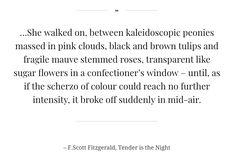F SCOTT FITZGERALD QUOTE - TENDER IS THE NIGHT
