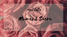 Moment Sacru 👑 meditație ghidată🙏🏻 𝓨𝓸𝓰𝓪 𝓬𝓾 𝓐𝓷𝓪 Drama, Spirituality, Yoga, In This Moment, Youtube, Movie Posters, Movies, Films, Film Poster