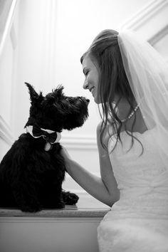 bride with dog on wedding day morning | NJ wedding photos | Studio A Images