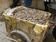 Snails for sale - yummy!  Fez