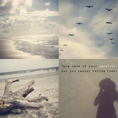 Great collection of photos captured by @Alicia {of Project Alicia} during her stay in Hilton Head.