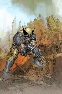 Wolverine - Mike Deodato Jr