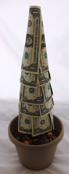 Who says money doesnt grow on trees? #cashcrafts #gradgifts