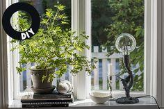 DIY spraypainted lamp (photo: Maria Soxbo) – Husligheter.se London Apartment, Own Home, Planting Flowers, Cottage, Windows, Interiors, Plants, Diy, House